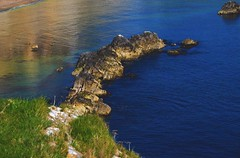 On top of Durdle Door (12turveyr) Tags: naturephotography nature photography landscapephotography landscape sea cove beach