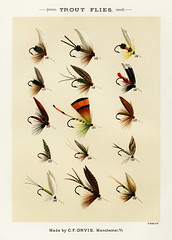 Trout Flies from Favorite Flies and Their Histories by Mary Orvis Marbury. Digitally enhanced from our own original 1892 Edition. (Free Public Domain Illustrations by rawpixel) Tags: americanartificialflies americanflypattern antique artificial artificialfly bait bug catch collection design drawing faded favoriteflies fishing fishingflies flies flshing fly flyfishing group handdrawn illustration insect marbury maryorvis maryorvismarbury old pattern poster publicdomain sepia set sketch troutflies vibrant vintage