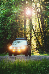 2012 Subaru Forester (softroadingthewest.com) Tags: subaru forester sh subaruforester softroading dirtroad oregon fallcreek