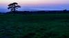 大山高原牧場17・Daisen Farm (anglo10) Tags: 伯耆町 鳥取県 japan 夕景 sunset 高原 field 大山 山 mountain 海 seashore