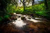 Spring has Sprung (Augmented Reality Images (Getty Contributor)) Tags: longexposure spring perthshire landscape waterfall water forest nisifilters scotland trees nature canon rocks dunningglen dunning unitedkingdom gb