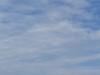 Cagnotte, Landes: les cigognes tournent en rond (Marie-Hélène Cingal) Tags: cagnotte 40 cigognes clouds nuages ciel sky storks nwn