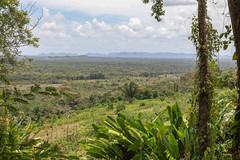 Belize Vista (Jill Clardy) Tags: 2018 cruise ncl norwegiancruiselines repositioning belize nimlipunit maya mayan ruins vista mountain jungle view 201804129l8a1529 365the2018edition 3652018 day102365 12apr18