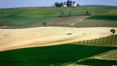 monferrato (cattazen.com) Tags: monferrato