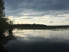 Lake Iamonia @ Bull Headley Landing Leon Co FL (4) (POsrUs) Tags: ©lancetaylor posrus florida leoncounty lakeiamonia bullheadleylanding