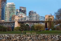 Urban Nature 🏦🌳  Vancouver, BC (Michael Thornquist) Tags: burrardbridge bridge vanierpark parkbench electricunicycle falsecreek seawall gatewaytothenorthwestpassage ilovevan vancouver britishcolumbia dailyhivevan vancitybuzz vancouverisawesome veryvancouver 604now photos604 explorecanada ilovebc vancouverbc vancouvercanada vancity pacificnorthwest pnw metrovancouver gvrd canada 500px