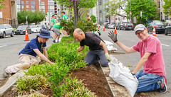 2018.05.06 Vermont Avenue, NW Garden - Work Party, Washington, DC USA 01805