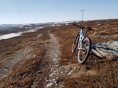 A dry path, great! (GeirB,) Tags: varanger vadsø vadsoe vadso varangerfjorden vår varangerfjord arctic 70north trekfuelex9 trening diadora craft freemotion sweethelmet uteliv østfinnmark finnmark training trailbike norway outdoor offroad nordnorge barentsregionen bike northernnorway 29x240 spiuk klikkpedaler cycling bikelife garmin gps may mtb bontrager pathbike stisykling mamil