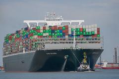 Ever Golden_DVL5048 (larry_antwerp) Tags: evergolden evergreen container 9811012 ship schip vessel schelde scheldt port haven antwerpen antwerp antwerptowage