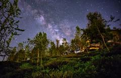 武岫農圃 銀河 (張麗芬) Tags: taiwan 南投縣 鹿谷鄉 武岫農圃 銀河 天空 夜晚 風景 星空