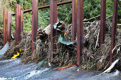 20180513-05-Storm damage after rivulet flood of 2018 (Roger T Wong) Tags: 2018 australia hobart rogertwong sel2470z sony2470 sonya7iii sonyalpha7iii sonyfe2470mmf4zaosscarlzeissvariotessart sonyilce7m3 tasmania damage flood rivulet water