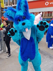 """Leeds furmeet May2018 • <a style=""""font-size:0.8em;"""" href=""""http://www.flickr.com/photos/97271265@N08/41348967745/"""" target=""""_blank"""">View on Flickr</a>"""