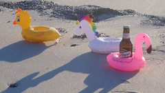 SUMMERFEELING 20180515_071325 (2) (hans 1960) Tags: strand beach sand meer wasser outdoor fun spass farben colours ente duck einhorn unicorn flamigo bier beer sanmiquel durst prost licht light schatten shadow wellen wave flasche botle gelb yellow pink bunt colourful schwimmhilfe swim urlaub holyday party getränk getränkehalter tier plastik