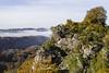 La Roche d'Oëtre (Regard'instants) Tags: 61orne bassenormandie france normandie paysage rochedoetre stphilbertsurorne saintphilbertsurorne fr