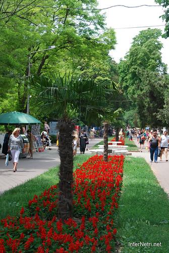 Одеса InterNetri  Ukraine 005