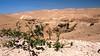 Judäische Wüste: Wadi Qelt  נהל פרת