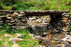 Bella Ponte Verde (sakthi vinodhini) Tags: nepal annapurna sanctuary trek backpack ngc landscape water flow abc himalayas bridge hdr