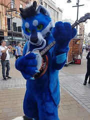 """Leeds furmeet May2018 • <a style=""""font-size:0.8em;"""" href=""""http://www.flickr.com/photos/97271265@N08/41528712824/"""" target=""""_blank"""">View on Flickr</a>"""