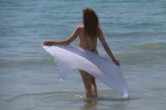 Voile au vent (domiguichard) Tags: cloth wind beach brittany bretagne plage mer
