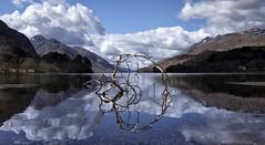 The Rebel (J McSporran) Tags: scotland highlands westhighlands glenfinnan lochshiel