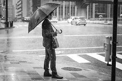No sun! (frank.gronau) Tags: street weis schwarz white black japan osaka wet nass anzug mann man umbrella regenschirm regen raining rain alpha sony gronau frank