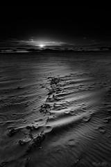 When the sun is going down... (Masako Metz) Tags: sunset beach sand seaweed ocean sea water rocks sky blackandwhite monochrome oregon coast pacific northwest usa america theendofday evening pattern footprints outdoor coastline shore shoreline
