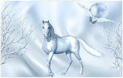 Nights In White Satin (Swissrock-II) Tags: horse owl romantic wallpaper winter white photoshop photoshopart photomanipulation digitalart satin dream 2018 may andykobel lightroom pixlr deviantart fantasy