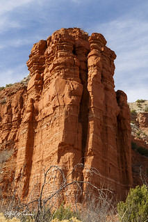 Caprock Canyon_MG_1431