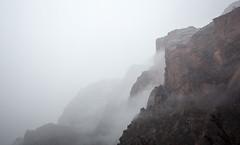 5C8A8069 (pbruch) Tags: zion national park summer winter snow rain fog