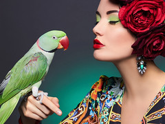 beautiful woman with a parrot and a flower (colourfulcreation05) Tags: adult beautiful beauty care caucasian closeup color desire face fashion female girl glamour gorgeous hair colorful lady lips love magnificent model natural accessories pleasure portrait pretty sensual sensuality shine dress studio sweet makeup woman young jewelry animal parrot wild nature bird brunette tropical flowers decoration rose exotic protection unusual russianfederation