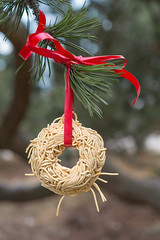 Focus On Spaghetti 16 (pni) Tags: spaghetti tree park branch red ribbon needle pine helsinki helsingfors finland suomi pekkanikrus skrubu pni