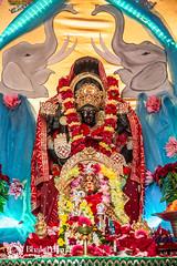 2018-05-20-p-0556 (Bhakti Marga) Tags: 2018 mahalakshmiyagna spn publishing