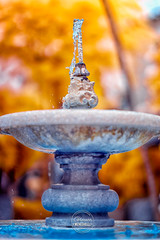Fountain (W_10) Tags: glaucomeneghelli infraredworld infraredphotography ir 590nm infraredcommunity infinityinfrared sonyimages sonyshooters mirrorless landscape creativeir infraredimages beautiful alphacollective kolarivision swpa photocompetition
