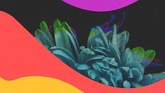 Mokita - When I See You (Stripped) - Armada Trice #YouTube #LuigiVanEndless #ArmadaTrice #BigRoom #News #Videos #Interviews #Lives #Songs #ElectronicMusic #Armada https://youtu.be/fNNyiKjUJEQ Mokita - When I See You (Stripped) ▶ https://ARTR250.lnk.to/WIS (LuigiVanEndless) Tags: facebook youtube luigi van endless música electrónica noticias videos eventos reviews canales news