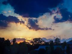 Sunset over Ueno Park Tokyo (AMcUK) Tags: em10 omdem10 omdem10mkii em10mkii omd olympus olympusuk m43 micro43rds micro43 microfourthirds tokyo ueno japan nippon sunset uenopark