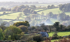 Overlooking the Walkham Valley - NK2_4559 (Jean Fry) Tags: dartmoor dartmoornationalpark devon englanduk moorland nationalparks trees uk walkhamvalley westcountry misty cycletrack princetowncycletrack farmland fields