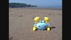 Crab (Martellotower) Tags: crab sandsend beach sand clockwork sideways sea