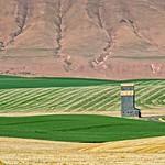 Wheat Fields Grain Elevator Columbia River Gorge 7600 A thumbnail