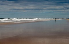 The Loneliness of The Long Distance Photographer (RoystonVasey) Tags: canon eos 400d 70300mm usm zoom northumberland seahouses bamburgh castle beach walk