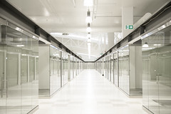 NHM other hallway