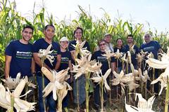 Equipo HarvestPlus LAC