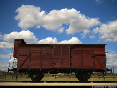 20170630_21 Closer shot of red wooden train car | Auschwitz concentration camp, Poland (ratexla) Tags: ratexlasinterrailtrip2017 interrail auschwitz 30jun2017 2017 canonpowershotsx50hs interrailing eurail eurailing tågluff tågluffa tågluffning travel travelling traveling journey epic europe earth tellus photophotospicturepicturesimageimagesfotofotonbildbilder wanderlust vacation holiday semester trip backpacking tågresatågresor resaresor europaeuropean sommar summer ontheroad oświęcim poland polska auschwitzconcentrationcamp concentrationcamp ww2 secondworldwar war nazism racism bigotry history violence auschwitziibirkenau old decay museum traincar red wooden wood traincars tågvagn tåg railroadearth theholocaust förintelsen koncentrationsläger