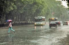 Дожди с грозами ждут ростовчан на наступившей неделе (Деловое сообщество) Tags: