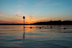 IMG_0408 (Alex Wilson Photography) Tags: sun sunset waves wavy ocean lake zurich illinois cool fun cold warm summer sunny happy