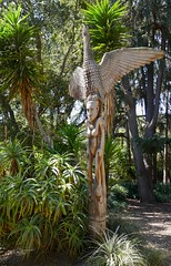 """Kura,"" Wood carving by Simon Gambulo and Jo Mare Wakundi (ali eminov) Tags: papuanewguineasculpturegarden stanforduniversity paloalto california woodart sculptures papuanewguinea kura eagle"