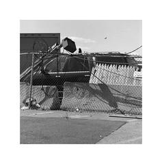 (billbostonmass) Tags: fomapan classic 100 film d76 hasselblad 150mm sonnar t epson v800 roxbury massachusetts methadone mile