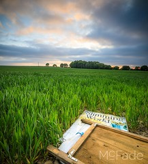 No more diet - 009 barley field at methley west yorks 2018_05_22 by mcfade-Pano (ade_mcfade) Tags: leeds yorkshire west photographer mcfade ade wilson canon 24mm barley fields grads landscapte polariser sunset tiltshift wheat