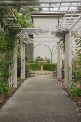 D75_3443 (joezhou2003) Tags: huntington rose garden architecture nikon d750 24120mm vr
