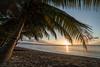 Caribbean Sunset (Tiomax80) Tags: caribbean sunset sea ocean sand beach coconut tree palm blue sky sun horizon endoftheday set gwada guadeloupe gwadloup coconuttree seascape caribbeansea portlouis plagedusouffleur ansedusouffleur paradise heaven holidays traveladdict d610 tiomax trip travel