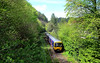 166211. (curly42) Tags: 166211 class166 dmu unit gwr chalford goldenvalley railway transport turbo travel publictransport